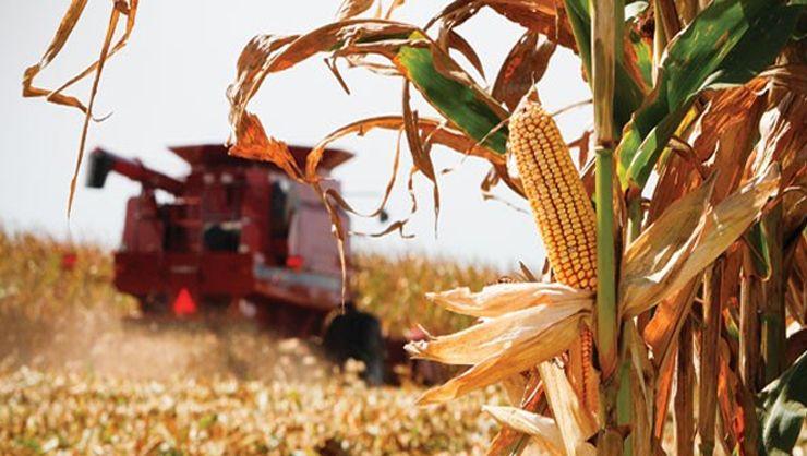 Harvesting - The Naked Kernel