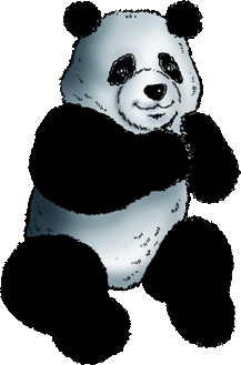Why not to use palm oil - Panda Image